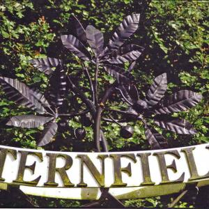 Sternfield Sign